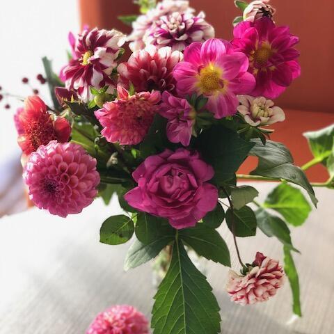 @銀河庭園 11月 The remains of the flowers